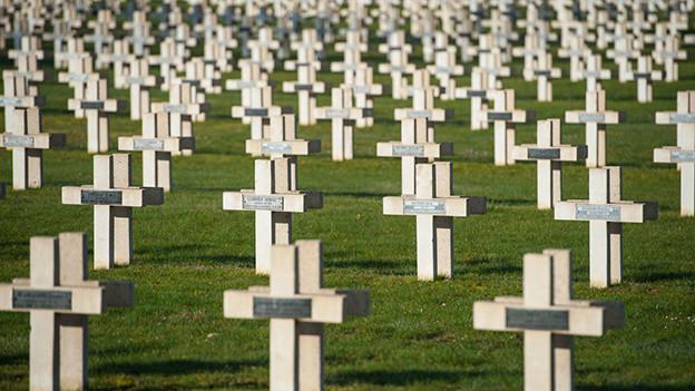 Unzählige weisse Kreuze auf einem Friedhof