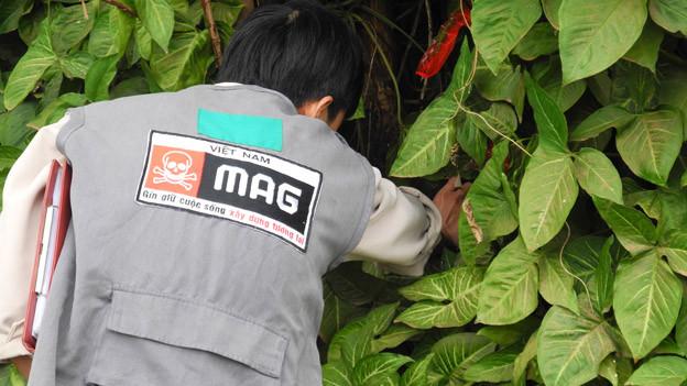 Ein Mann sucht in einem Gebüsch nach etwas.