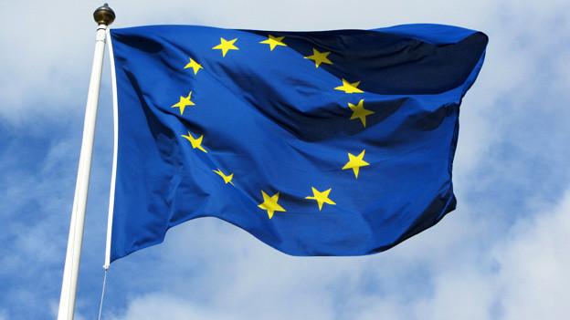 Eine Europaflagge.