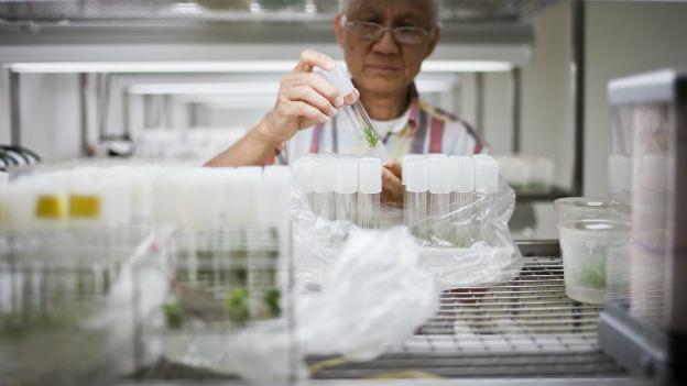 Ein Forscher mit Reagenzgläsern.