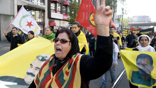 Demonstranten mit Plakaten und Flaggen