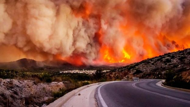 Ein Waldbrand in Griechenland