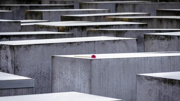 Audio «Antisemitismus - aus der Geschichte nichts gelernt?» abspielen.