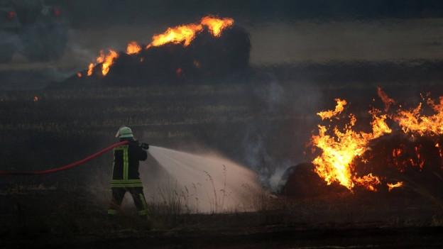 Mann in Feuerwehruniform und mit spritzendem Wasserschlauch steht in einem Feld, das brennt.