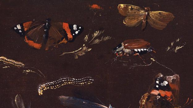 Studie Öl auf Holz aus dem 18. Jahrhundert.