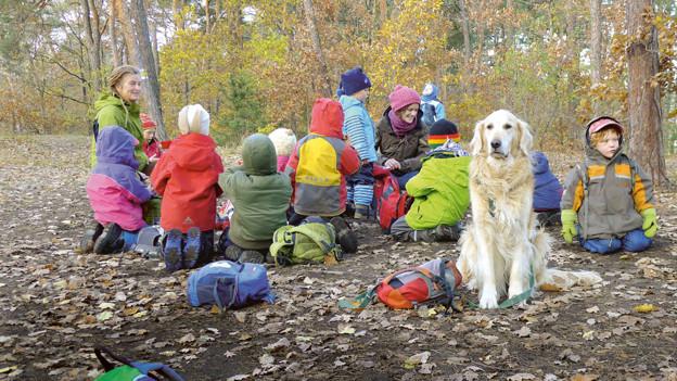 Eine Gruppe von Kindern und ein Hund sitzen im Wald
