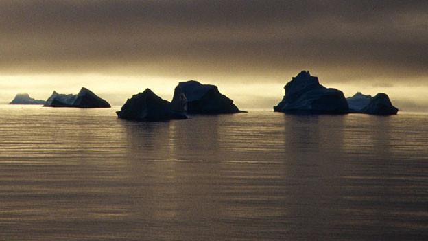 Eisberge vor Thule.