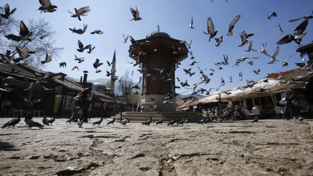 Ein Brunnen in Sarajevo, um den Tauben fliegen.