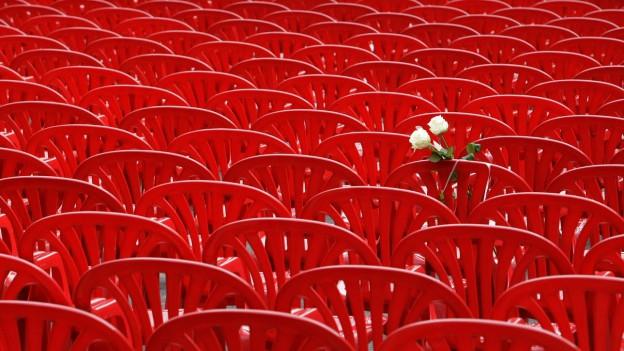 Viele rote Plastikstühle sind nebeneinander aufgereiht, auf einem Stuhl sind zwei weisse Rosen.