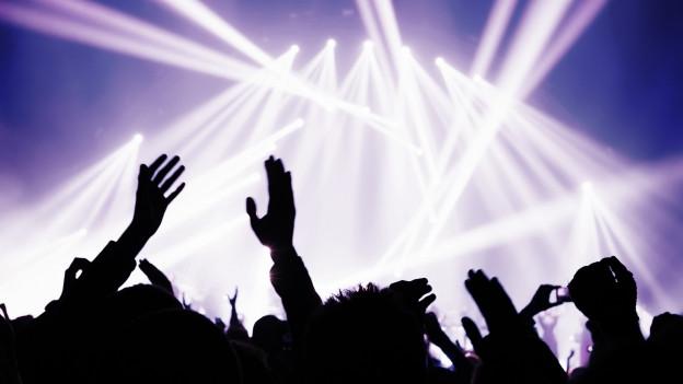 Eine Menge an einem Konzert.