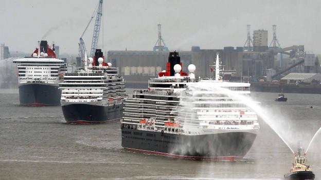 Drei grosse Kreuzfahrtschiffe fahren hintereinander her.