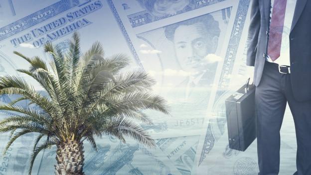 Palmen, im Hintergrund ein Mann mit Aktenkoffer und Dollarscheine