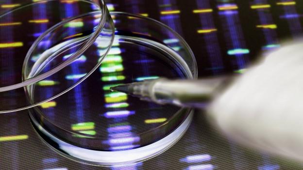 Eine DNA Probe wird im Labor erfasst