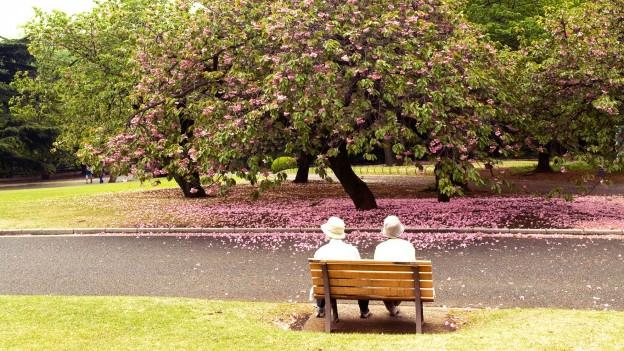 2 Menschen sitzen auf einer Parkbank vor einem blühenden Baum.