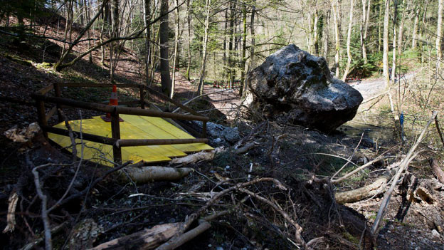 Der riesige Felsbrocken liegt im Wald.