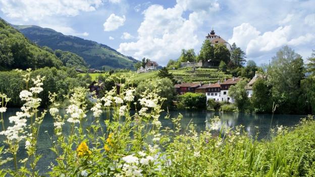 Schloss Werdenberg.