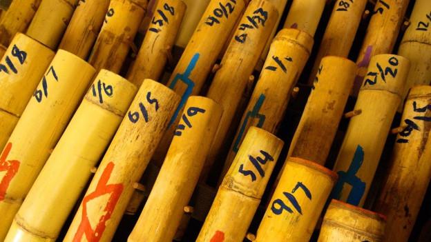 Bambusröhren aus der Nähe fotografiert.