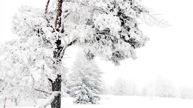 Franz Schubert beendete den Liederzyklus «Winterreise» 1827, ein Jahr vor seinem Tod.