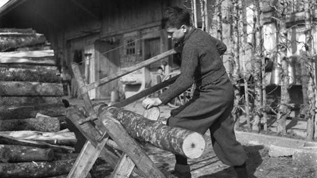 Ein Schweizer Verdingkind bei der Arbeit 1945