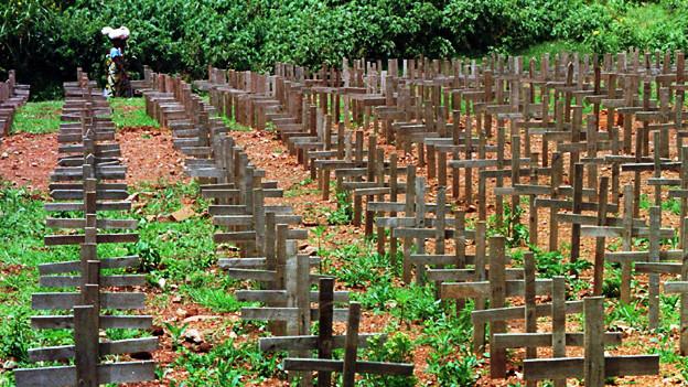 Die Fotografie zeigt unzählige Holzkreuze auf grün überwachsenem Boden.
