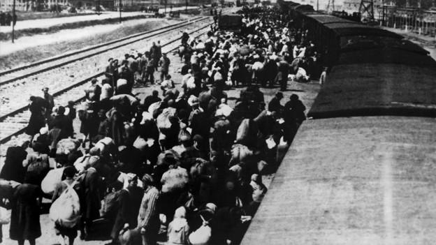 Juden werden mit einem Zug nach Auschwitz gebracht.