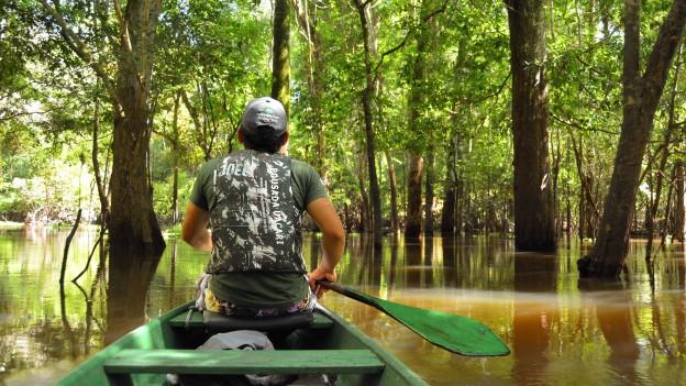 Mann auf einem Boot im Amazonasgebiet