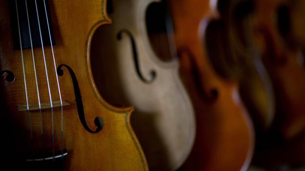Mehrere aufgereihte Geigen