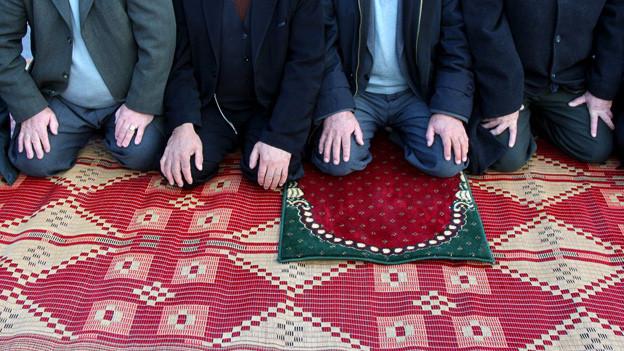 Weit verbreitete Demutshaltung: Muslime in Albanien beim Gebet.