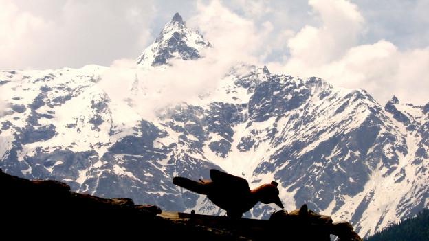 Spitze des Kailash im Tibet.
