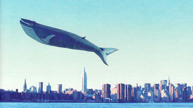 «Wenn die Wale an Land gehen» ist die Geschichte junger Menschen in der DDR, die sich mit ihrer Kunst von der Gesellschaft abgrenzen.
