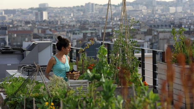 Eine Frau auf einem Dachgarten. Im Hintergrund eine Grossstadt.