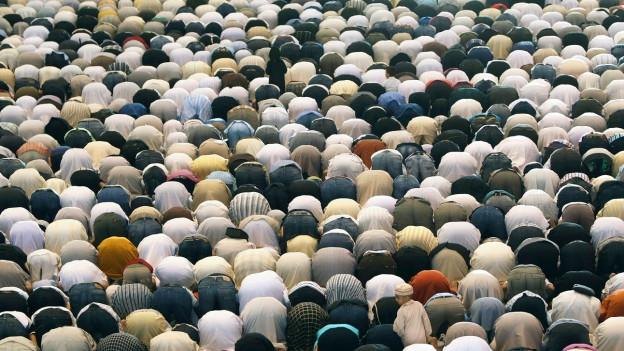 Muslime beten.
