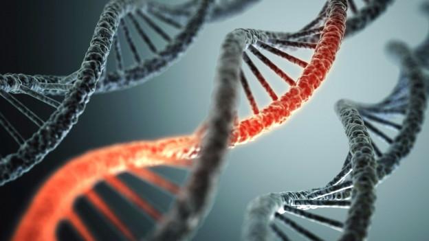 Modell einer DNA, spiralförmig, rot-schwarz.