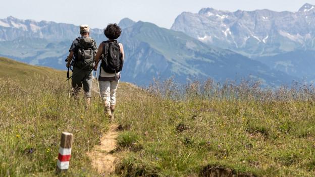 Ein Mann und eine Frau wandern auf einer Wiese.