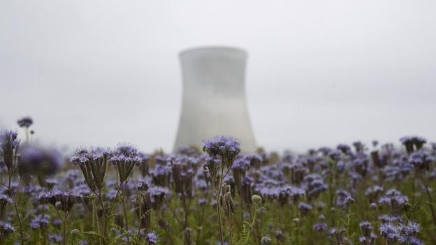 In der Schweiz sorgte 2017 die Energieforschung und Energiepolitik für viele Diskussionen.