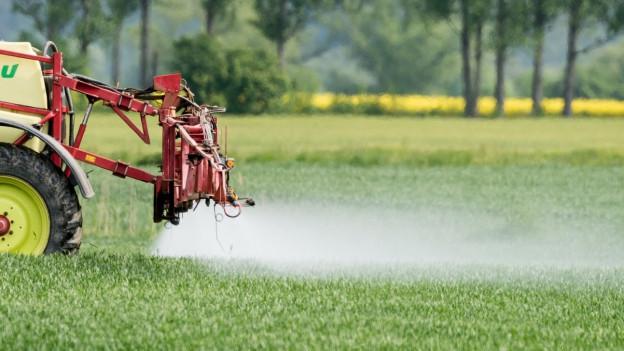 Ein landwirtschaftliches Gefährt spritzt eine Flüssigkeit auf ein Feld.