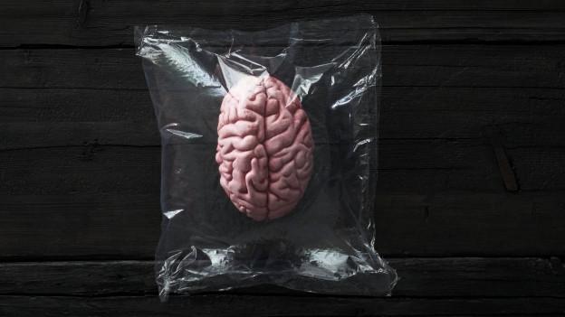 Ein Hirn ist in einem Plastiksack auf einem schwarzen Holzuntergrund.