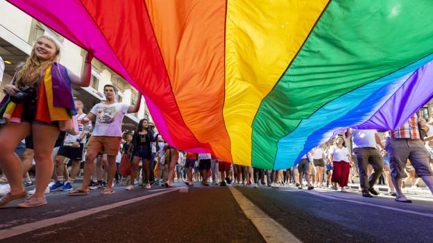 Menschenmenge mit riesiger Regenbogen-Fahne in den Händen