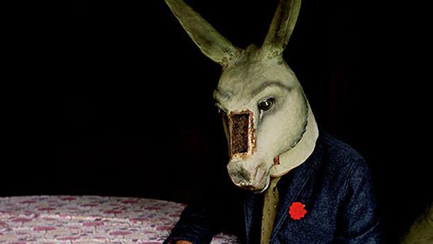 Ein Esel auf dem Cover und zu jedem Song einen Kurzfilm: «The Waiting Room» heisst das neue Album der Englischen Tindersticks.