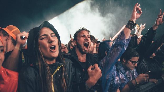 Festivalsommer-Publikum.