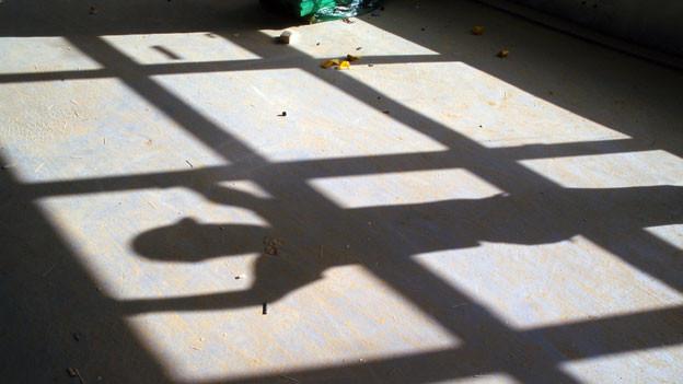 Der Schatten.