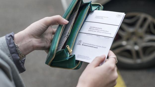 Ohne Führerschein sollte man besser niemanden hinter das eigene Steuer lassen.