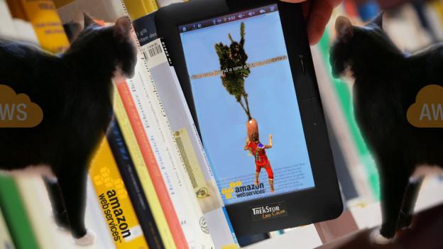 Katzen lesen gerne E-Books - und lieben den Sanch-o-Schnurrlimat.