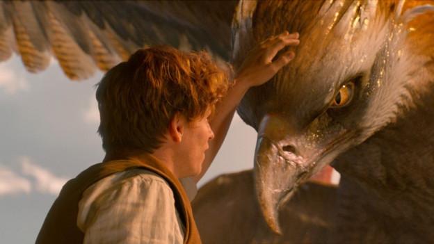 Eigentlich will Newt Scamander (Eddie Redmayne) nur das vierflügelige Vogelwesen Frank nach Arizona bringen.