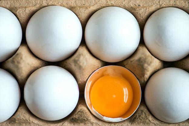 Der Skandal um Fipronil-Eier ist sinnbildlich dafür, wie die Landwirtschaft in den Niederlanden funktioniert.