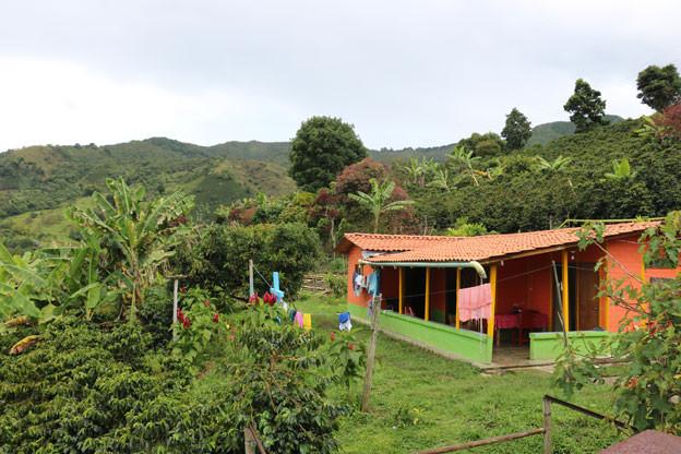 Auch die Kaffeefinca von Avelardo Echeverría leidet immer mehr unter den Wetterkapriolen in Kolumbien.