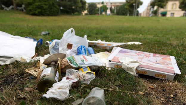 Abfall liegt im St. Johanns-Park in Basel
