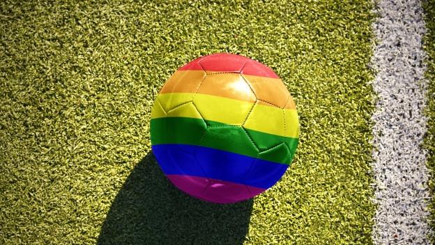 Ein Ball in Regenbogenfarben liegt auf einem Fussballrasen.