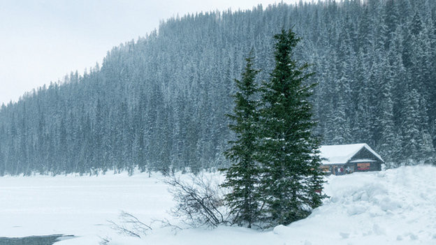 Elli H. Radinger: Minnesota Winter (Rütten & Loening)