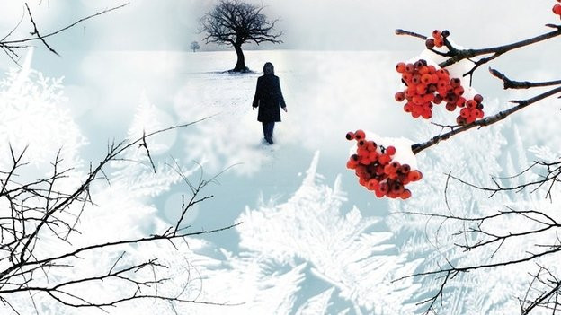 Delphine Bertholon: Am Anfang war der Frost (Limes Verlag)